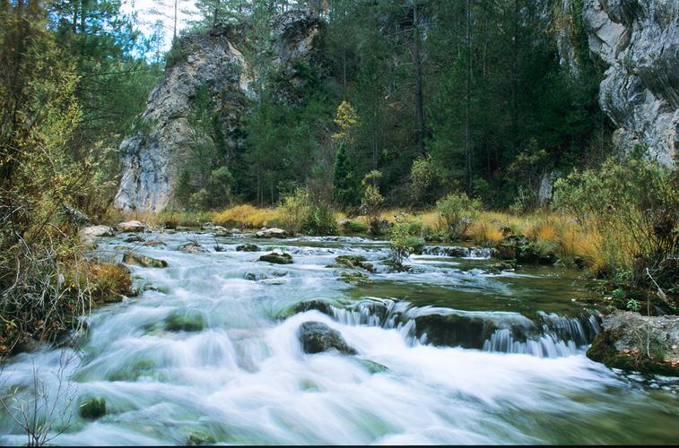Fuente: Parque El Hosquillo