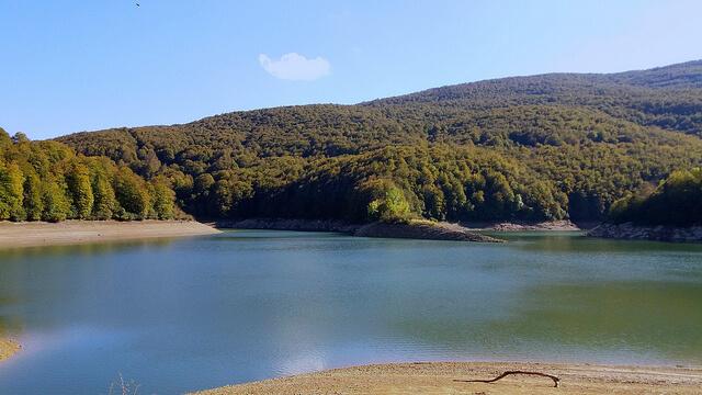 Selva de Irati - Descubriendo Navarra