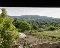 Casa Rural La Poveda De Soria