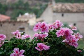 Rosella de Rubielos casa rural en Fuentes De Rubielos (Teruel)