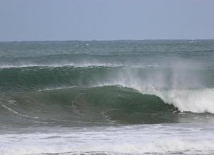 Surf N Soul